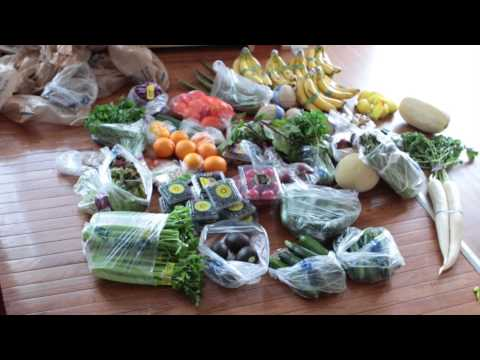 Raw diet for ASD Recovery Videos