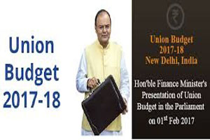 Union budget 2017-18 for persons with disabilities